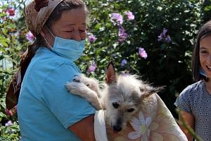 Spenden für nachhaltigen Tierschutz!